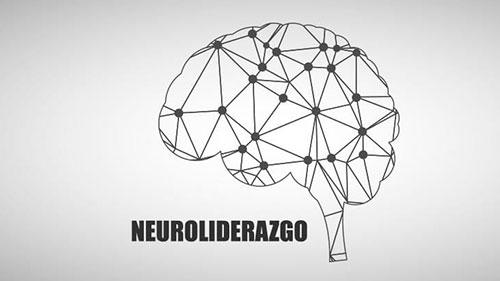 Neuorplasticidad